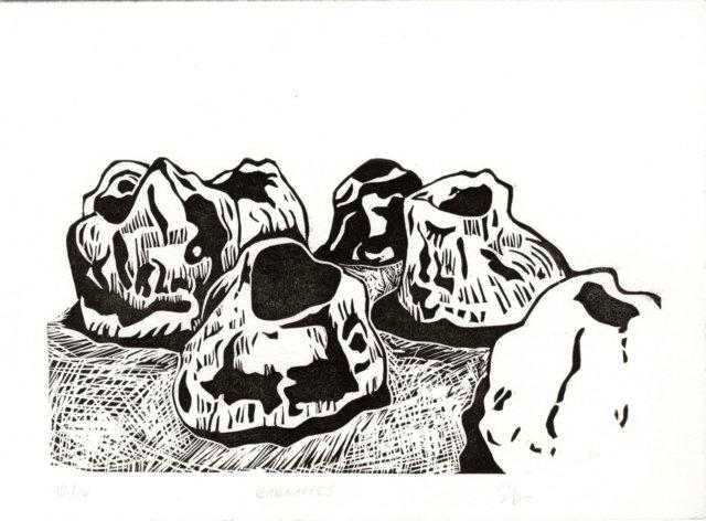 Barnacles by Samantha Thomas