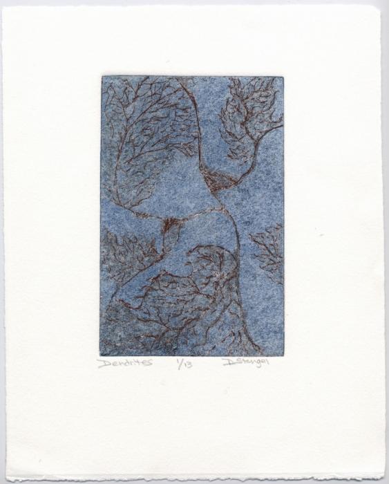 Dendrites by Dorothy Stengel