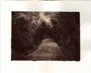 Path Through Mayan Ruins by Julia Barnes-McHugh